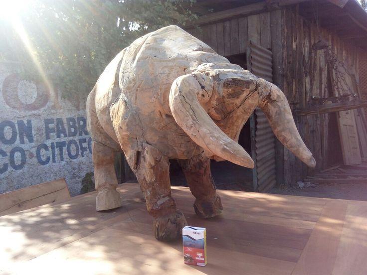 Esculturas monumentales de madera a pedido...aqui Tori de 170 x 90 cms. En madera de Roble demolición. Comprado por Hotel Boutique Nativa Bellavista