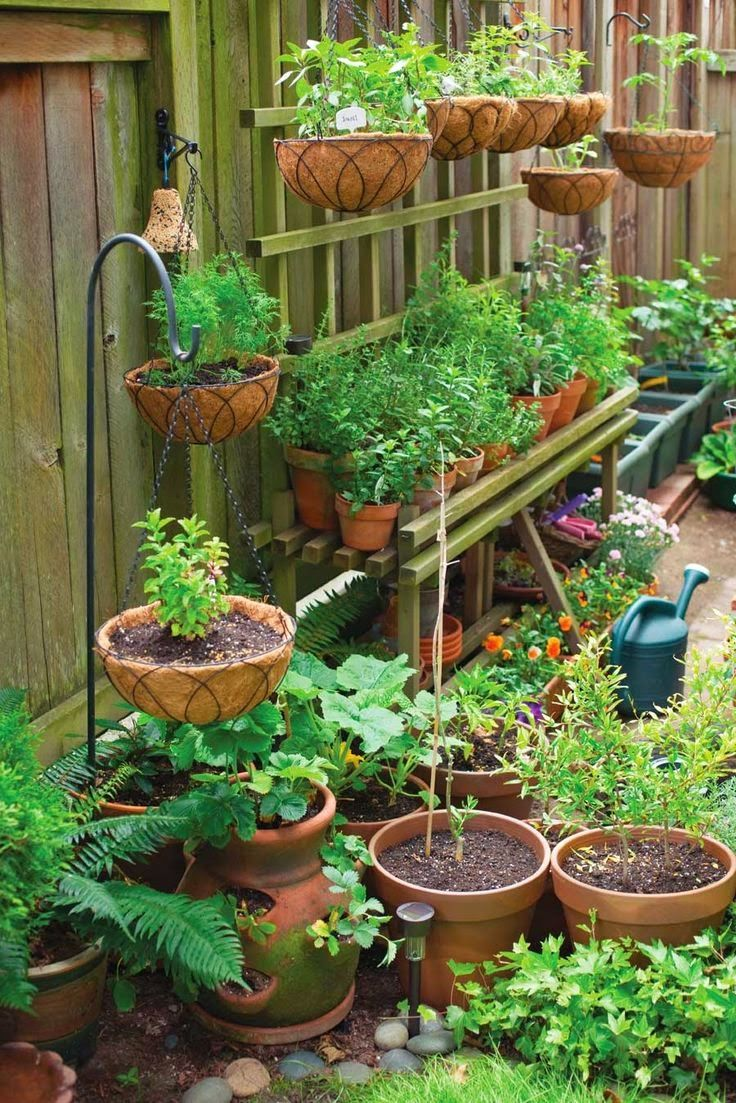Container Gardening Made Easy You can grow anything, from artichokes to zucchini, in a container.