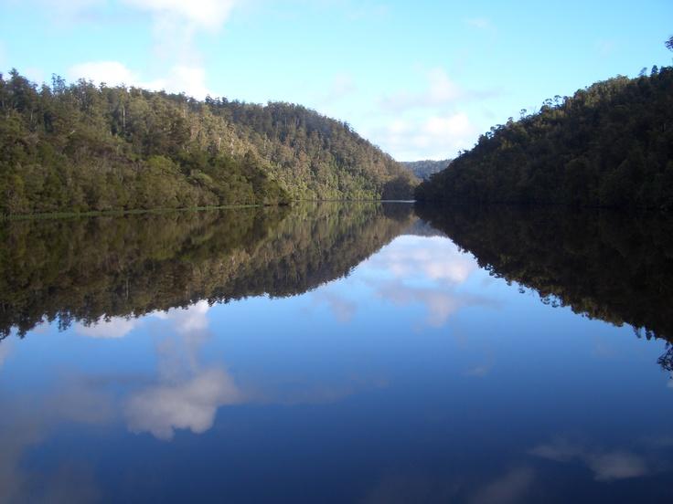 Pieman River, Tarkine, TASMANIA
