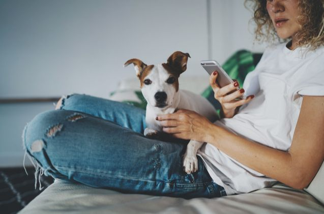 Pin On Pet News