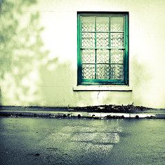 Doors and Windows - Art - Window  by Tom Gowanlock