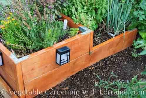 Raised Bed Garden Designs // cedar mulch for the walk ways with lights