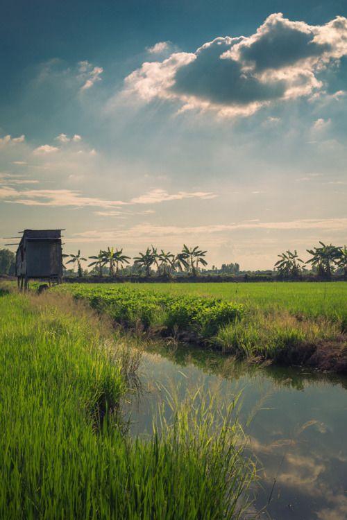 Somewhere near Can Tho, Vietnam