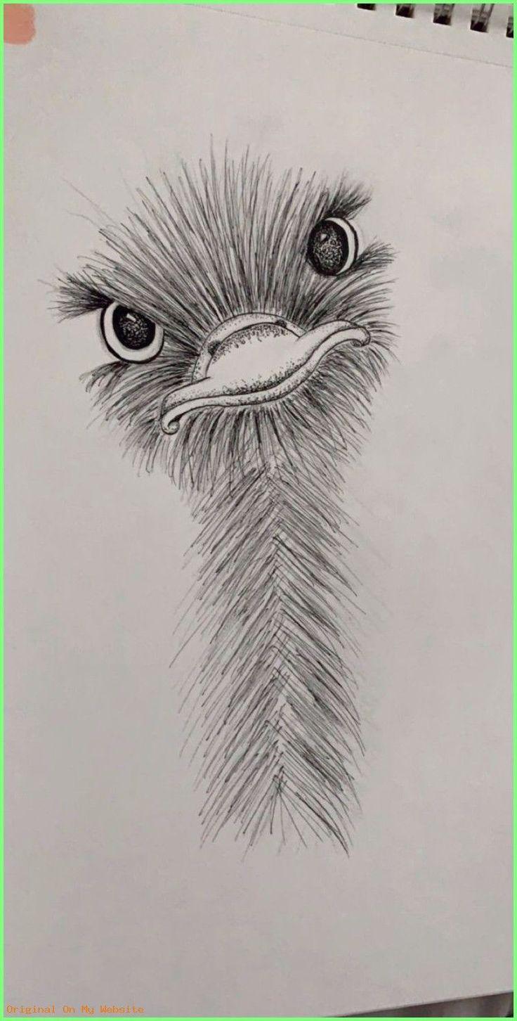 Art Sketches Tumblr – little ostrich friend :) #art #animalart #drawing #sketch …