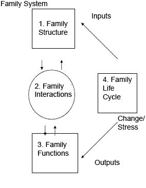 Family System Theory: reduce symptoms by resolving intergenerational issues that intrude upon an individual's ability to function.
