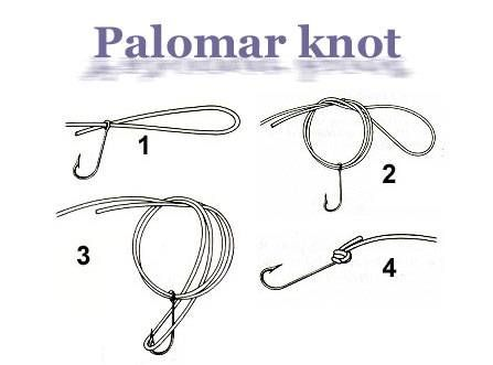 Best 25 palomar knot ideas on pinterest for Fishing knots for lures