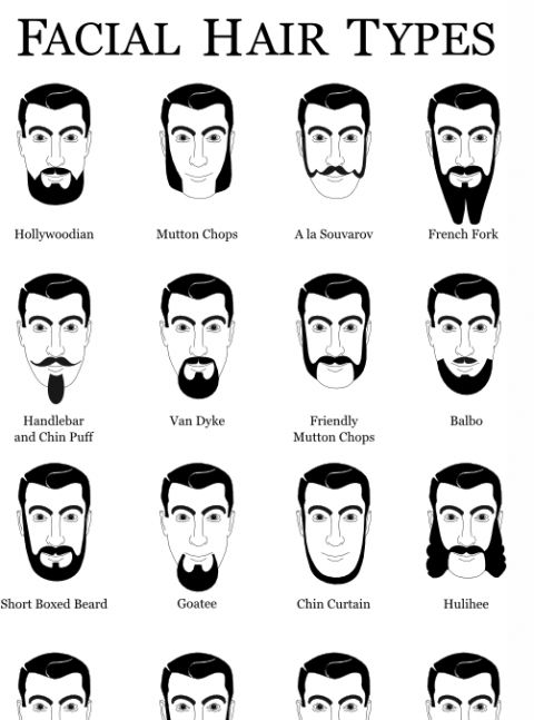 names of different facial hair styles hair types movember 8054 | 18e5ecaa9792bddb98614c95c0a88763