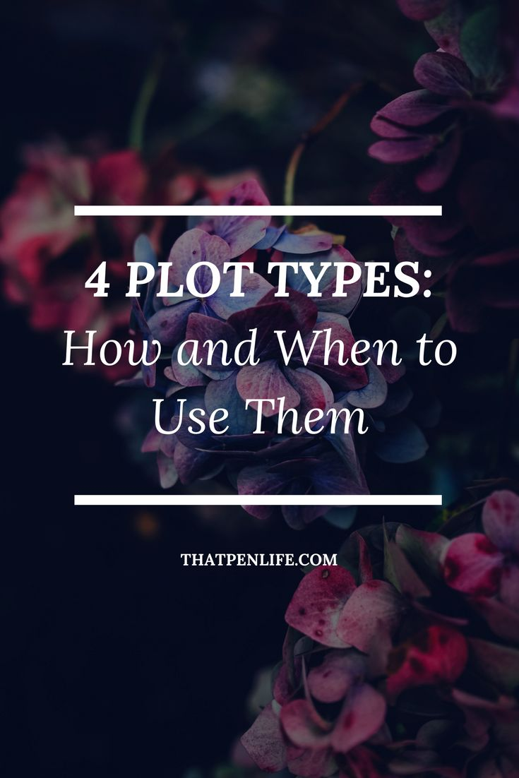 Nothing is as crucial to your book's success than the plot. Break down the story and decide on the plot structure that I will use to best convey it.