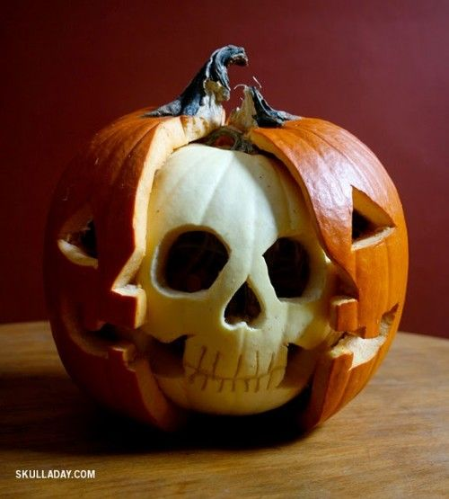 best pumpkin ever.