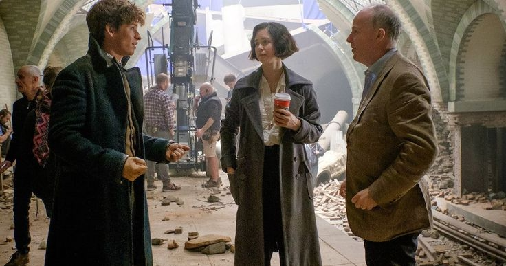 David Yates Will Direct All 5 Fantastic Beasts Movies -- J.K. Rowling is serving as the screenwriter on the 5-Part Fantastic Beasts epic that will span 19 years in the life of Newt Scamander. -- http://movieweb.com/fantastic-beasts-franchise-director-david-yates-5-movies/