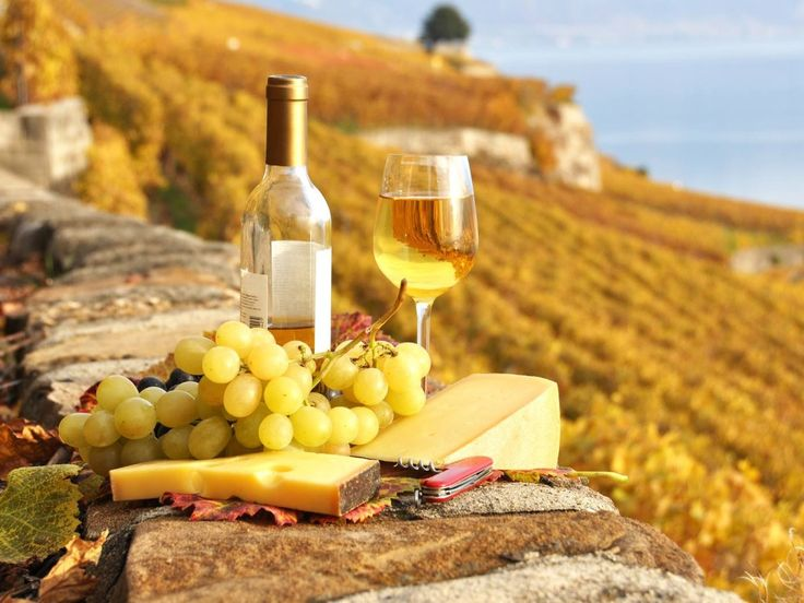 осенний виноград - Поиск в Google
