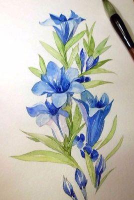 Рисовать цветы акварелью пошагово