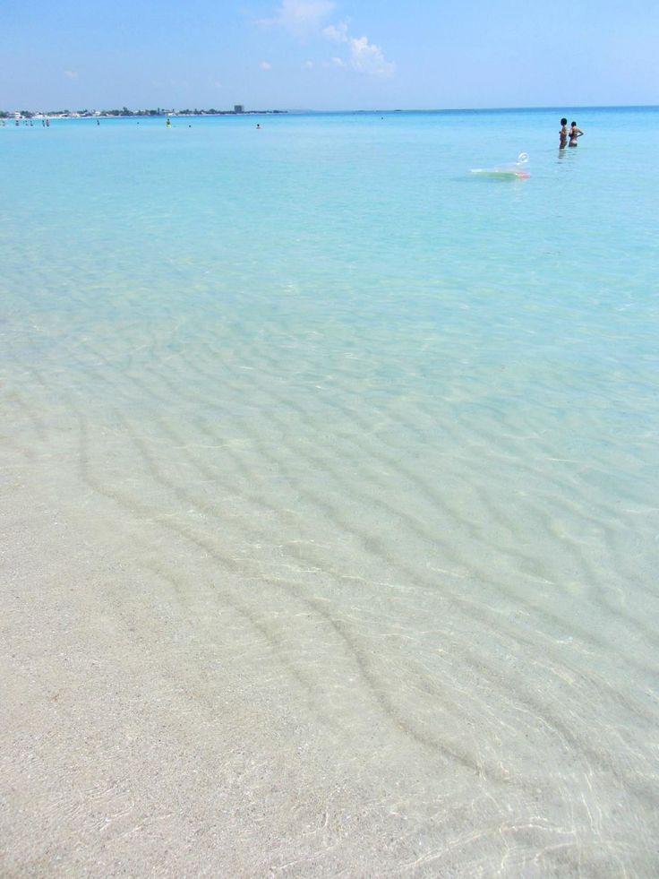 Mare limpido di Punta Prosciutto / Salento / Italia