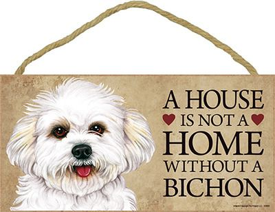 A House is Not a Home Without a Bichon