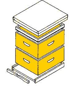 bee hive plans