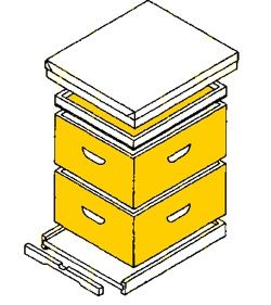 Observation hive woodworking plans woodworking projects for Beehive plans blueprints