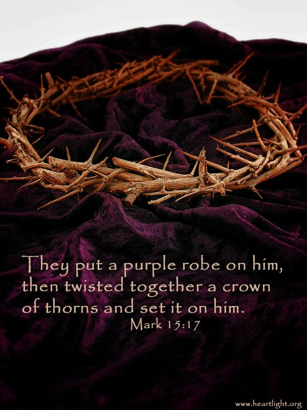 """They put a purple robe on him, then twisted together a crown of thorns and set it on him."" ~ Mark 15:17"
