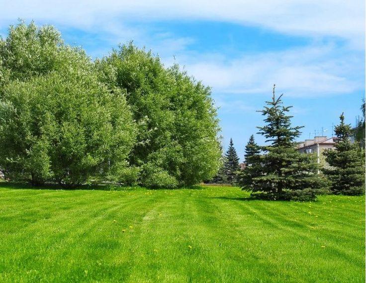 33360 Lignan De Bordeaux Residential building land - For Sale