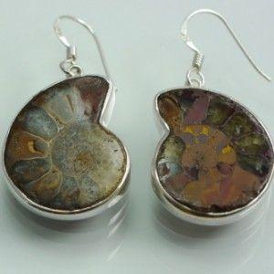 Ammonite-Earrings-1_355