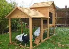 Chicken Coop Ideas - Seems a tad small for the girls in there, but could be expanded