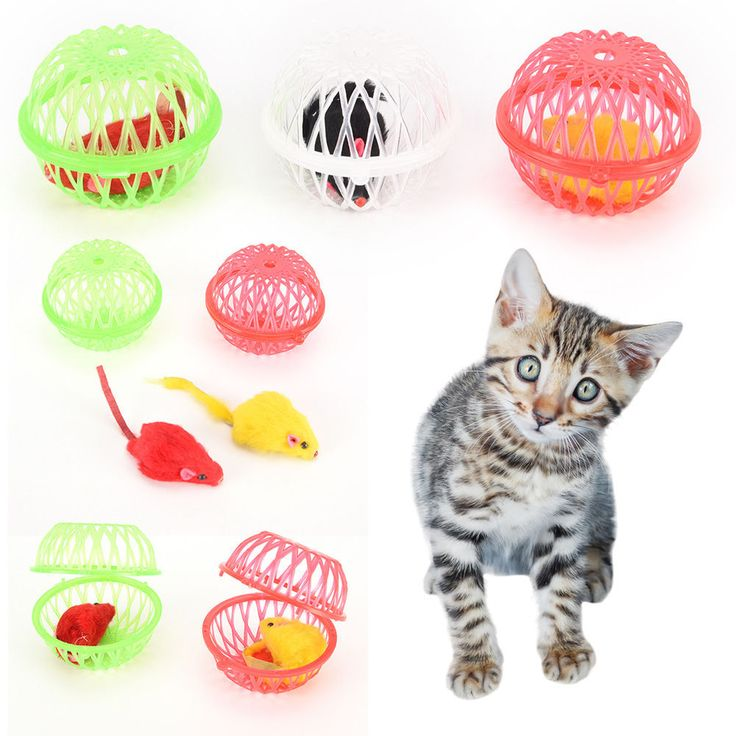 Christmas gift pet cat kitten funny playing toy fake mouse mice rat in cage^-^ | Pet Supplies, Cat Supplies, Toys | eBay!