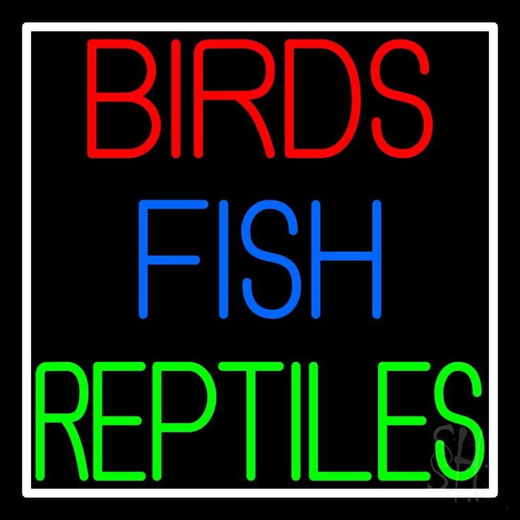 17 best images about animal neon sign on pinterest logos for Www plenty of fish sign in