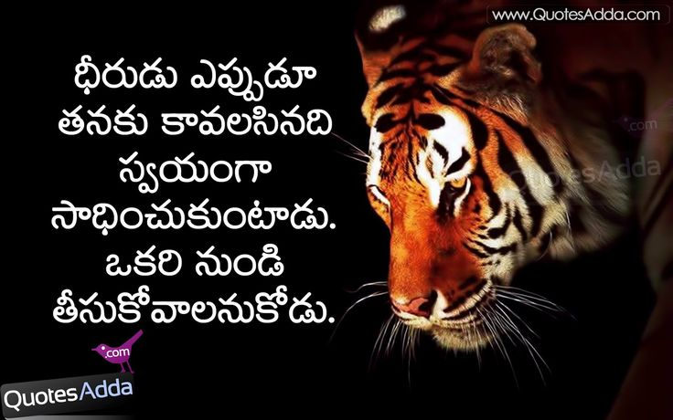 life quotes facebook com Telugu Best Nice motivational Quotes QuotesAddacom Telugu