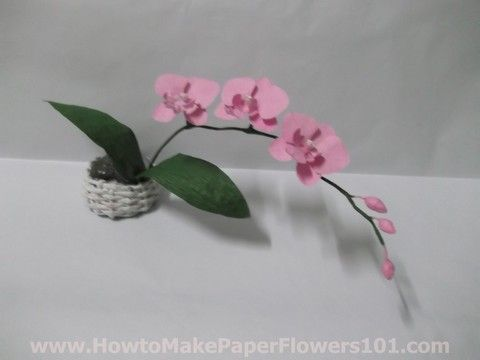 How to Make Paper Orchids Step by Step Instructions pictures - bjl