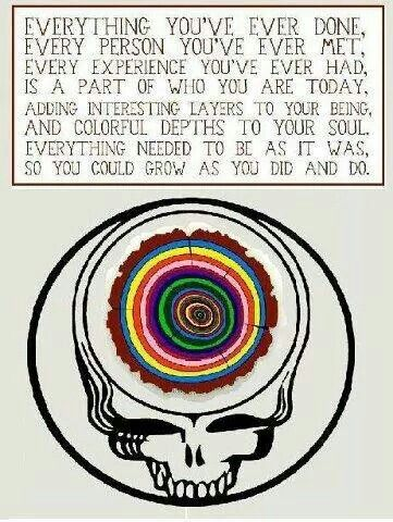 Grateful Dead Steal Your Face Everything...is part of who you are today.