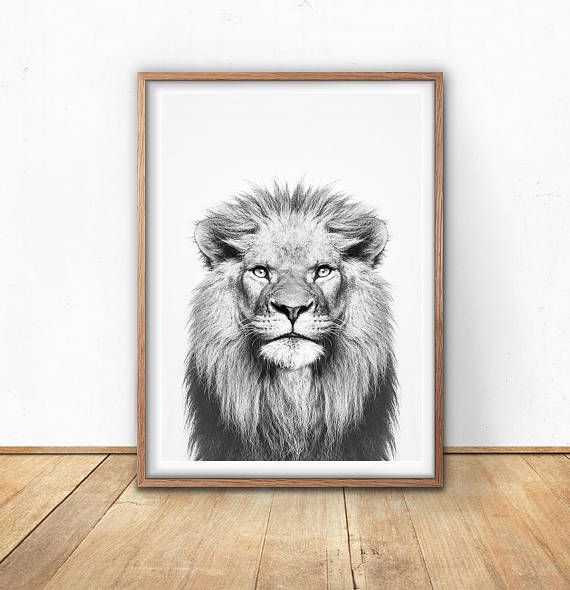 Lion Print - Animal Wall Art, Digital Art Download, Black And White, Safari Poster, Wild Animal, African Lion, Animal Portrait, Lion Photo   ************INSTANT DOWNLOAD*********************  Hello And Welcome to Sisi and Seb :)  Printable art is an easy, affordable way to style and