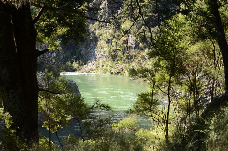 The river that runs through Alpine Hunting Property
