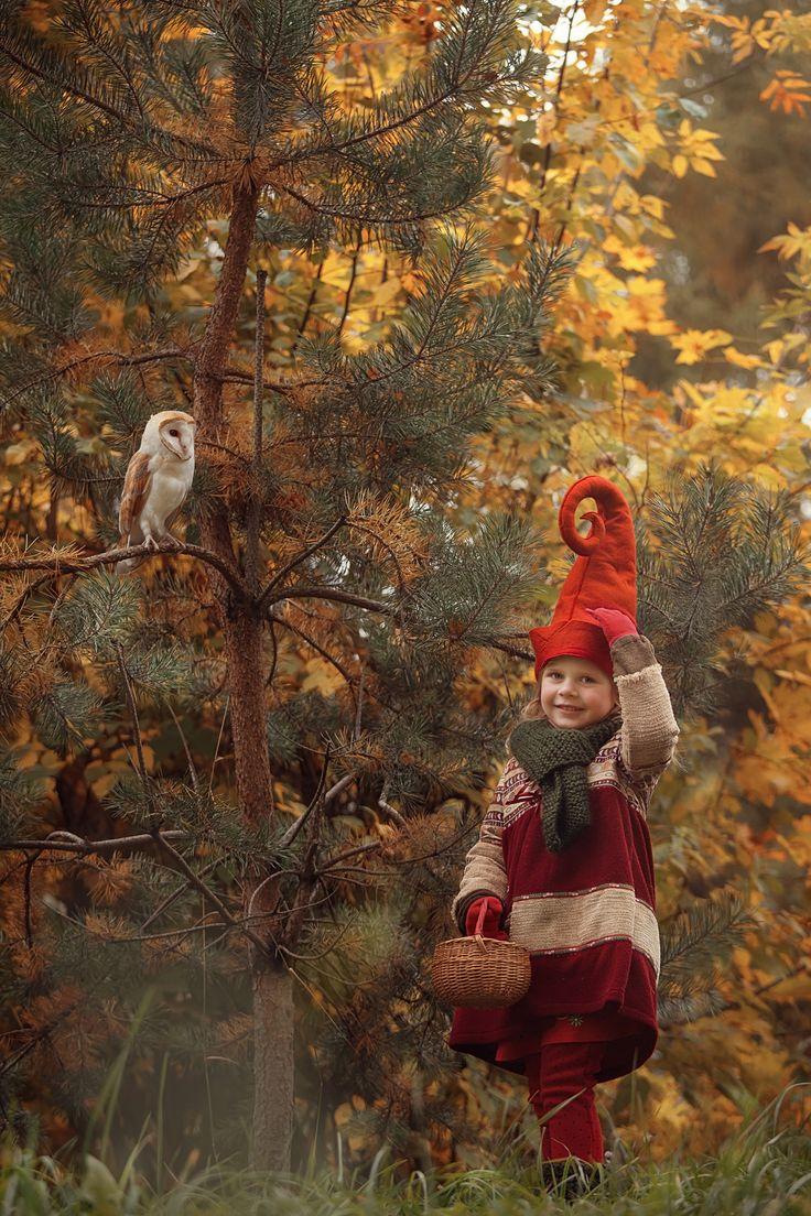 осень в картинках гном