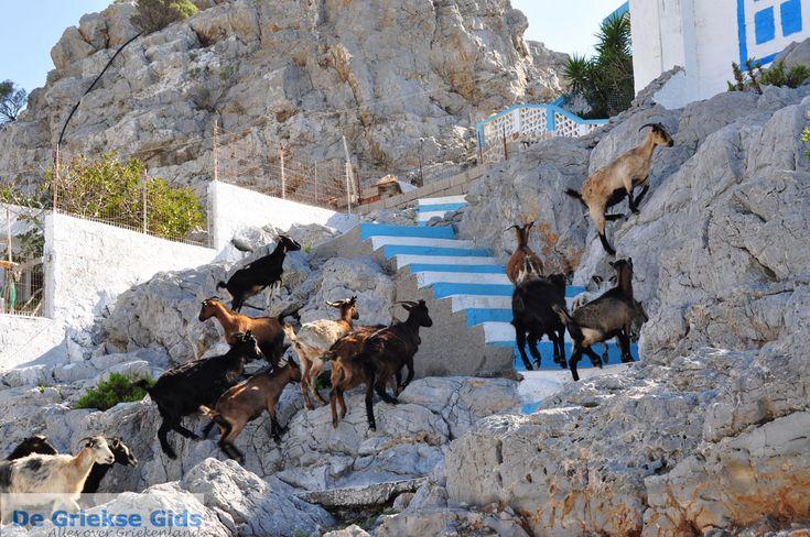Pserimos vakantie | Informatie over Prerimos | Griekenland