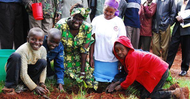 Wangari Maathai Essay Competition