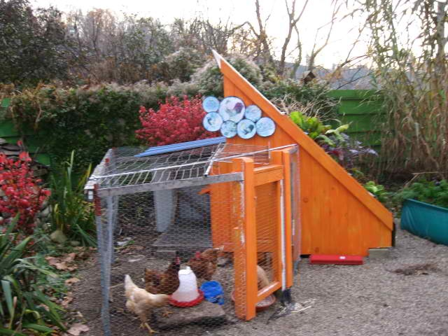 One of the original chicken housing. Can get a lot of chickens in here.Originals Chicken, Chicken House, The Originals