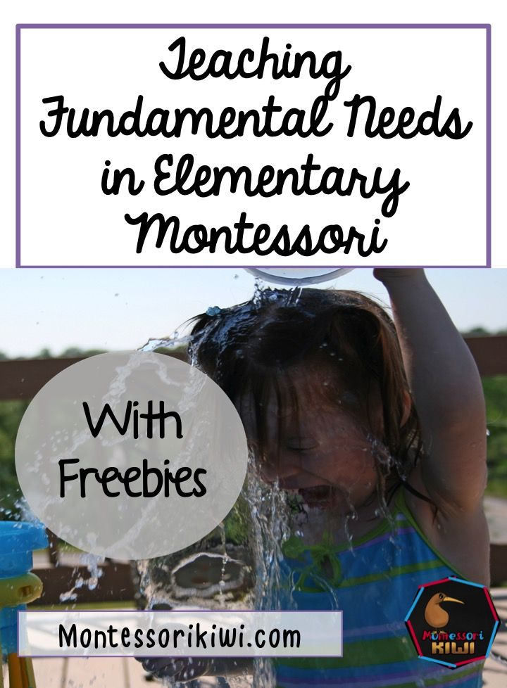 teaching fundamental needs in Montessori elementary