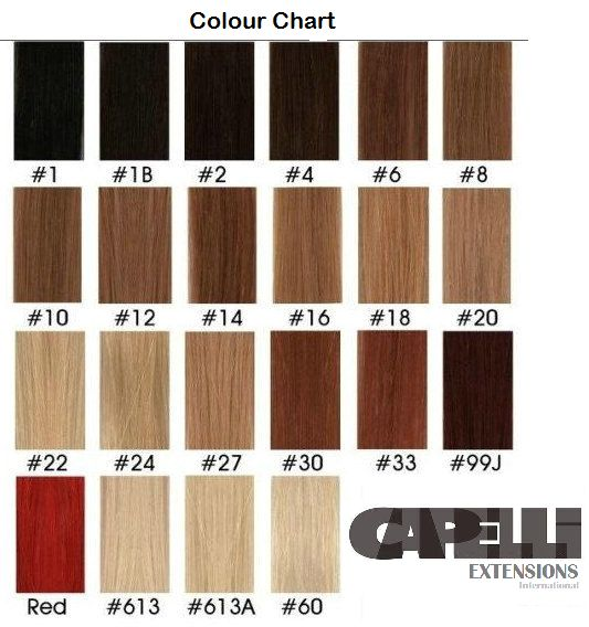 23 best hair extensions by capelli images on pinterest blondes capelli extensions international colour chart clip ins and tape extensions pmusecretfo Images