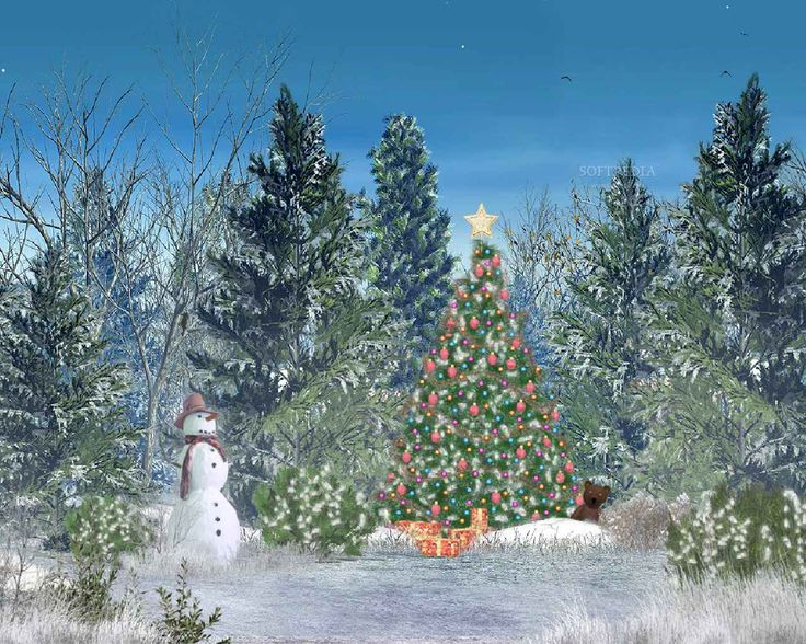 On Christmas eve, a colourful fir-tree decorated with multicoloured lights, garlands and beautiful Christmas tree toys appears on the same place each year in this unusual forest. Description from trialr.com. I searched for this on bing.com/images