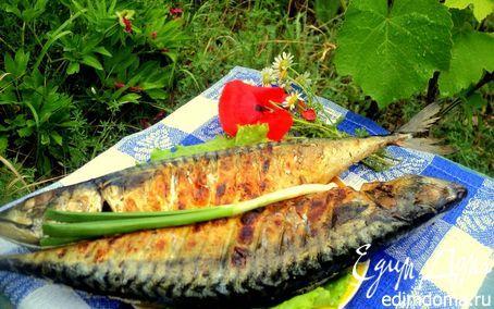 Скумбрия на гриле. скумбрия – 2 шт (1.0 кг) темное пиво – 500 мл оливковое масло – 1/3 стакана лимон – 1 шт смесь приправ для рыбы – по вкусу соль, перец – по вкусу петрушка.