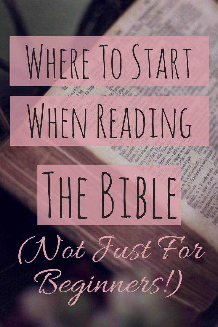 Where to Start When Reading the Bible (Not Just For Beginners!)
