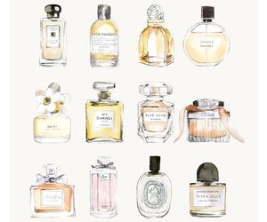 Fragrance love | We Heart It (108301)