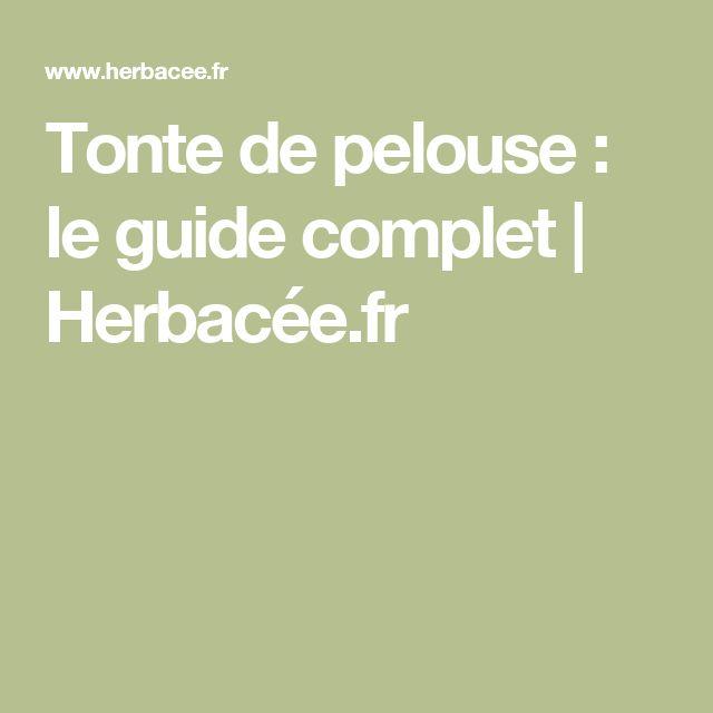Tonte de pelouse : le guide complet | Herbacée.fr