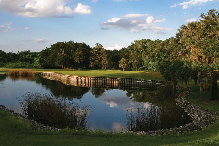 Golf course at Bobby Jones Golf Club, Sarasota, FL #playgolfsarasota
