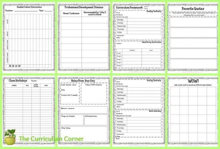This editable Teacher Planning Binder is designed to include everything you need to get your school year started on an organized note.