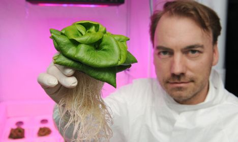 Astronauts could be growing fruit and vegetables in space in the future, with German scientists developing greenhouses for a potential Mars colony. Not only beneficial to the astronaut's nutrition, the fresh vegetables will also boost their morale.
