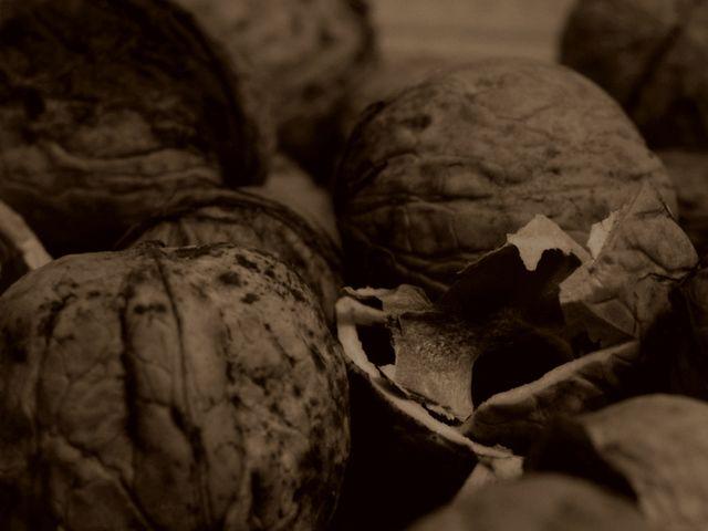 orzechy włoskie / walnuts