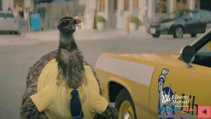 Limu emu doug keys short liberty mutual insurance