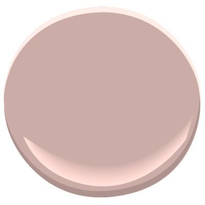 I just painted my new apartment Rose bisque. I love it!