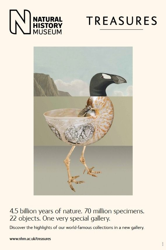 Beautiful Natural History Museum Posters: Art directors and graphic designers will drool.