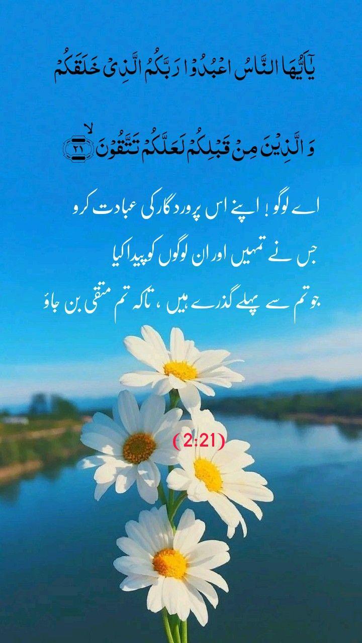 Qurani Ayat With Urdu Translation Quran Quotes Inspirational Quran Verses Quran Quotes